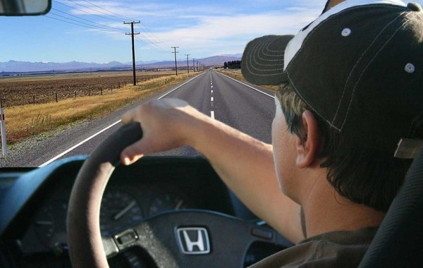 Licencias de conducir (NZTA)