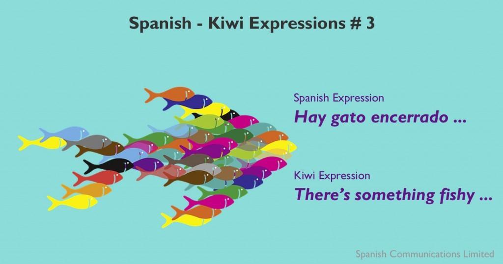 Spanish - kiwi expressions # 3